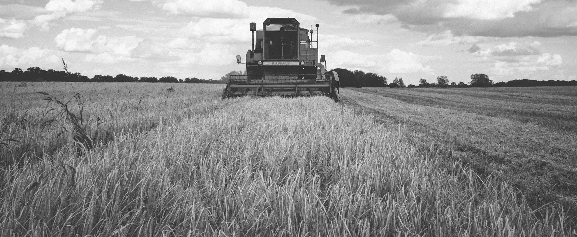 inbound marketing agro